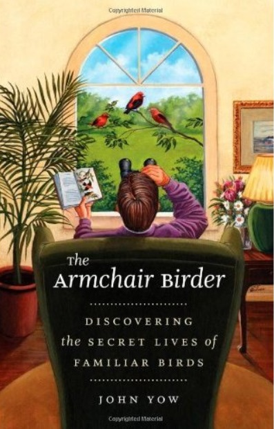 The Armchair Birder: Discovering the Secret Lives of Familiar Birds free download