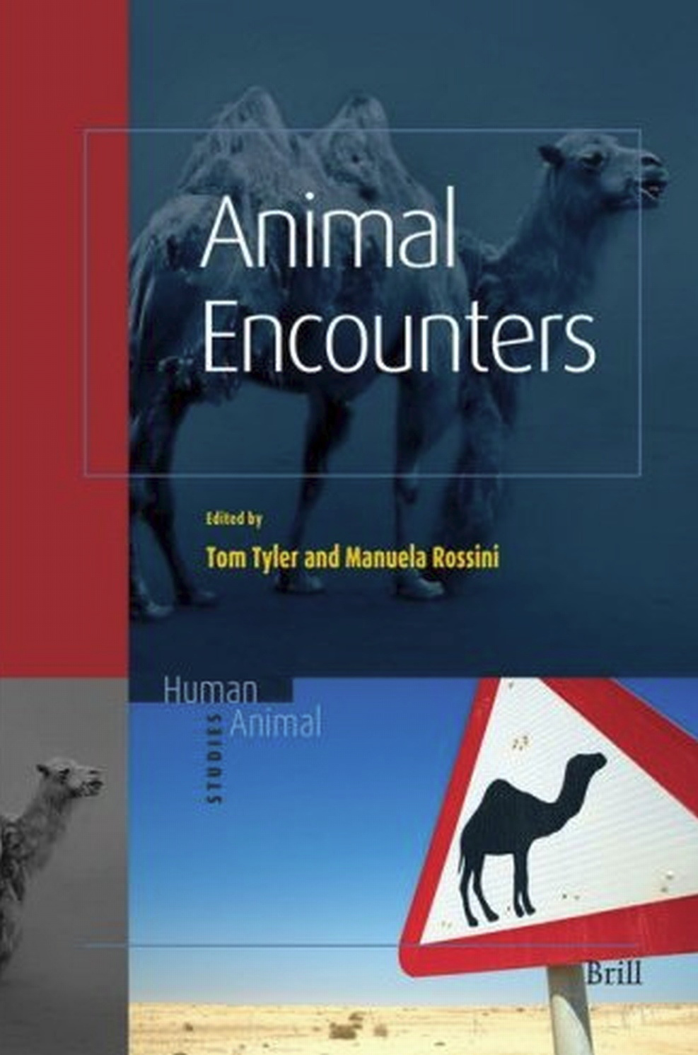 Animal Encounters free download