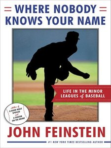 Where Nobody Knows Your Name: Life In the Minor Leagues of Baseball free download