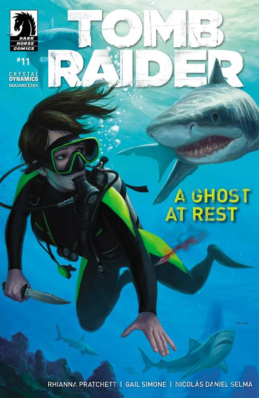 Tomb Raider 011 (2014) free download