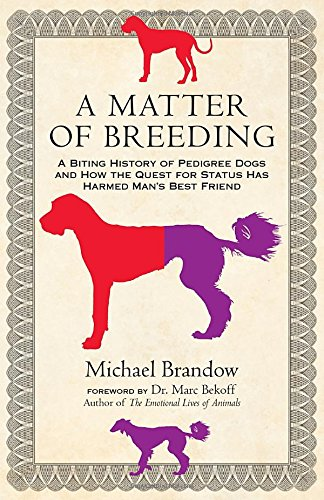 A Matter of Breeding: A Biting History of Pedigree Dogs and How the Quest for Status Has Harmed Man's Best Friend free download
