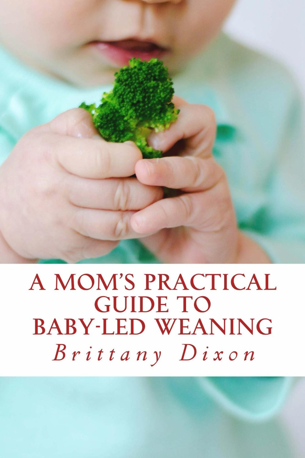 A Mom's Practical Guide to Baby-Led Weaning free download