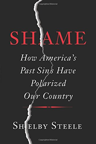 Shame: How Americas Past Sins Have Polarized Our Country free download
