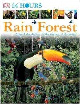 DK 24 Hours: Rain Forest by DK Publishing free download