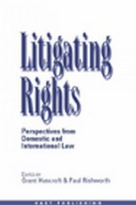 Litigating Rights: Perspectives from Domestic and International Law free download