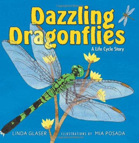 Dazzling Dragonflies: A Life Cycle Story free download