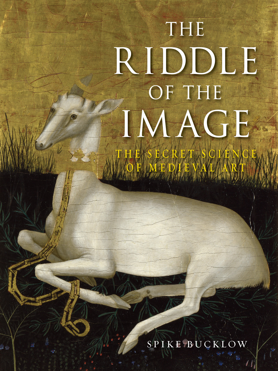 The Riddle of the Image: The Secret Science of Medieval Art free download