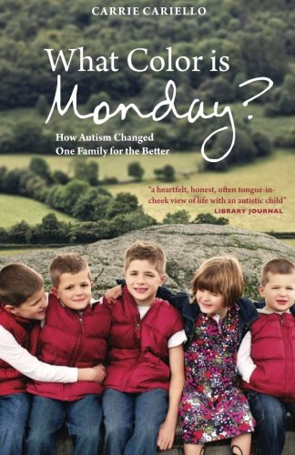 What Color is Monday? How Autism Changed One Family for the Better free download