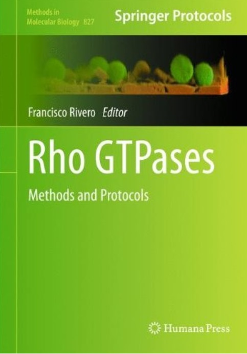 Rho GTPases: Methods and Protocols free download
