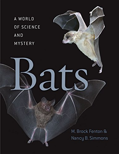 Bats: A World of Science and Mystery free download