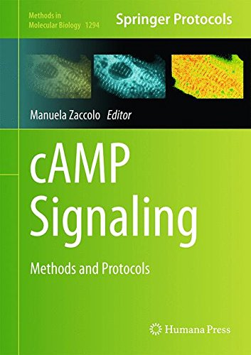 cAMP Signaling: Methods and Protocols free download