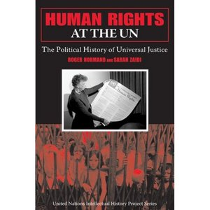 Human Rights at the UN: The Political History of Universal Justice free download