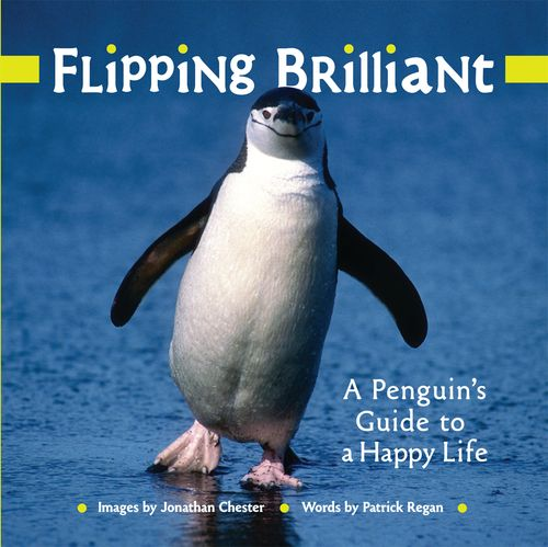 Flipping Brilliant: A Penguin's Guide to a Happy Life free download