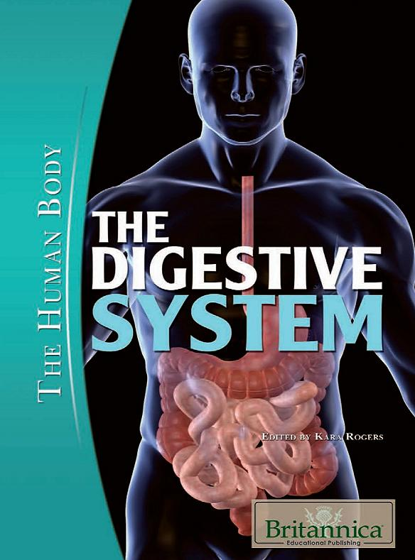 The Digestive System (The Human Body) free download