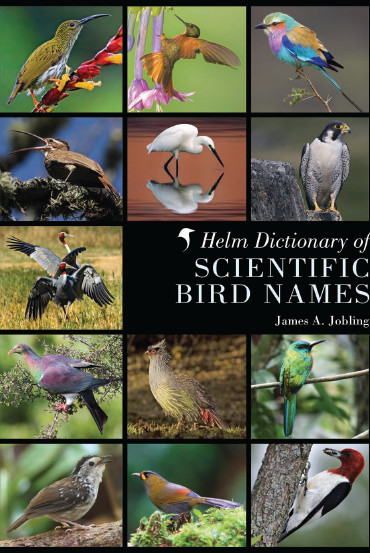 Helm Dictionary of Scientific Bird Names free download