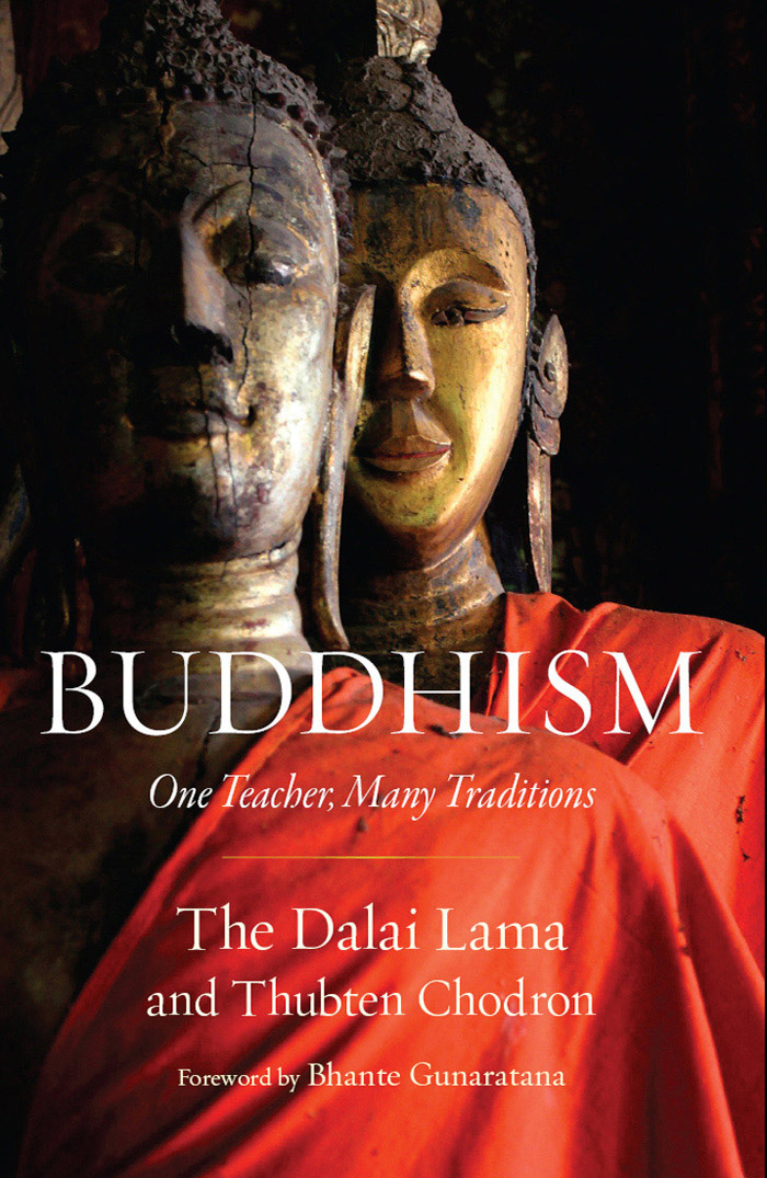 Buddhism: One Teacher, Many Traditions free download
