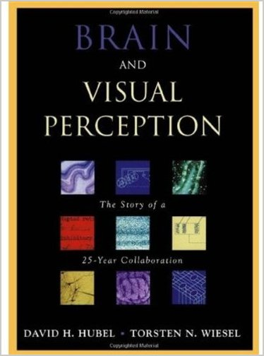 Brain and Visual Perception: The Story of a 25-Year Collaboration free download