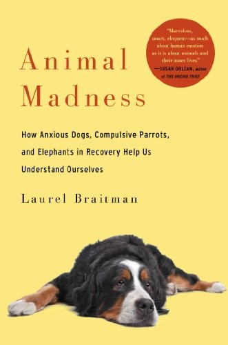 Animal Madness free download