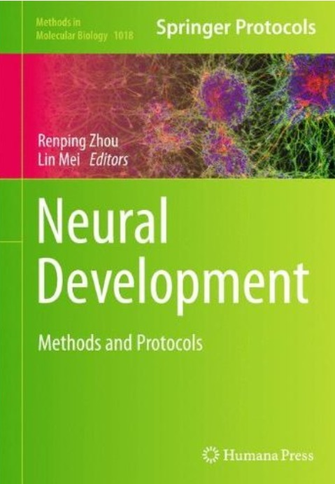 Neural Development: Methods and Protocols free download
