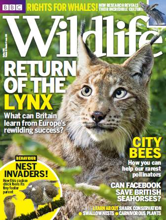 BBC Wildlife Magazine - Spring 2015 free download