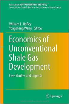 Economics of Unconventional Shale Gas Development: Case Studies and Impacts free download