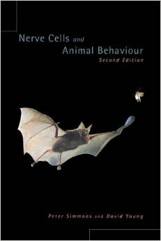 Nerve Cells and Animal Behaviour free download