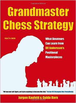 Grandmaster Chess Strategy: What Amateurs Can Learn from Ulf Andersson's Positional Masterpieces free download
