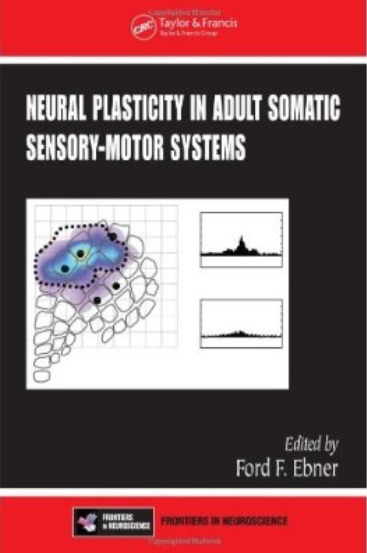 Neural Plasticity in Adult Somatic Sensory-Motor Systems free download