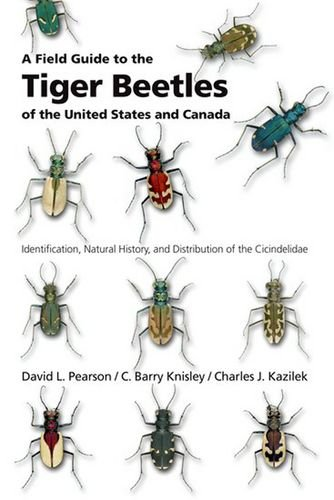 A Field Guide to the Tiger Beetles of the United States and Canada free download