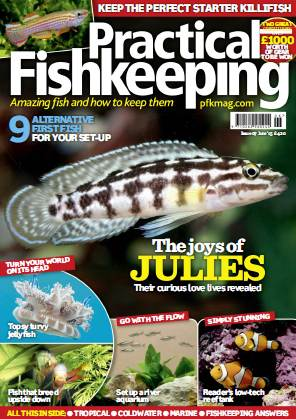Practical Fishkeeping - June 2015 free download