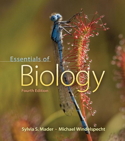 Essentials of Biology, 4 edition free download