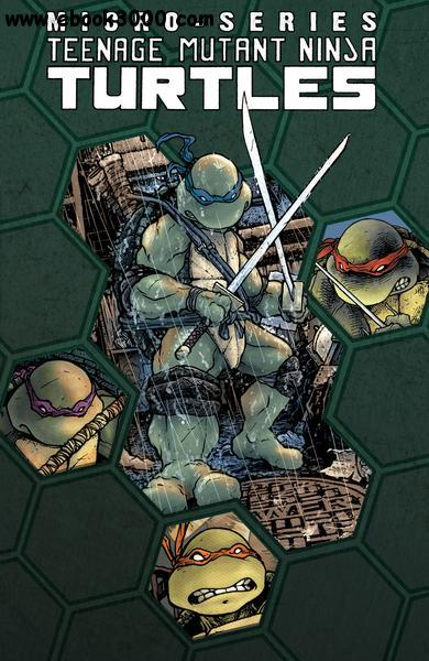 Teenage Mutant Ninja Turtles Micro Series v01 (2012) free download