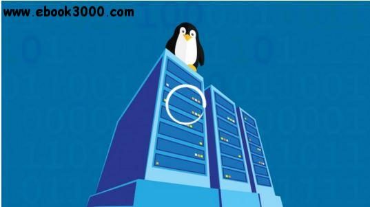 Debian Linux Server Setup Essentials for Webhosting and More free download