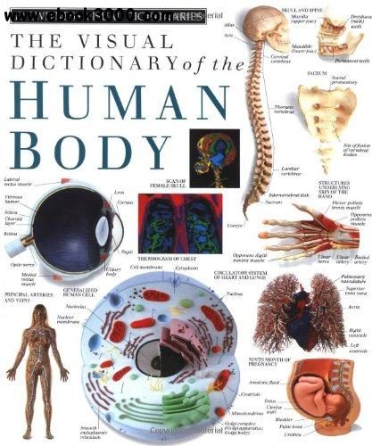 The Visual Dictionary of the Human Body (DK Eyewitness) free download