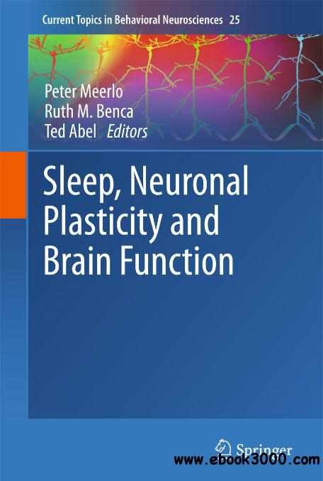 the role and importance of sleeping Sleep appears to be related to the complex functions of memory and learning in several ways it has been speculated that it is more efficient for new neuronal connections and pathways in the brain to be cemented during sleep, while there are relatively few external stimuli and little or no new information to process, an idea which makes much intuitive sense.