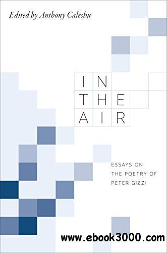 In the Air: Essays on the Poetry of Peter Gizzi